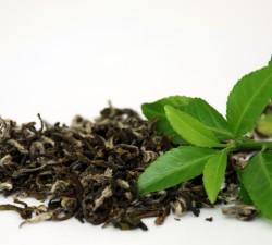 Ceaiul verde beneficii pentru sanatate