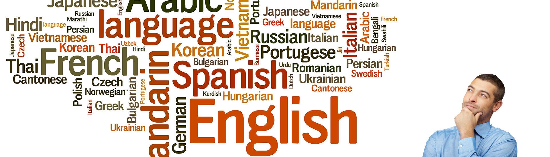 servicii traduceri