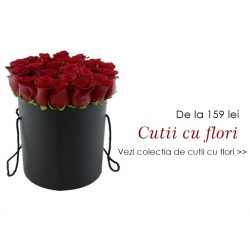 Floraria de vis si livrarea flori online – Aranjamente florale de trandafiri pentru orice ocazie